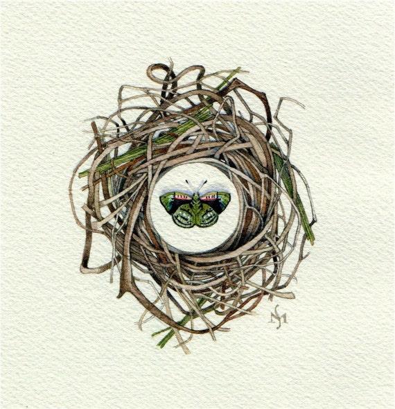 green butterfly nest original watercolor OOAK