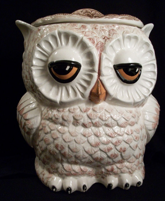 Reduced Again Sleepy Owl Cookie Jar Canister By Colorsoulartistry