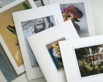 """A """"Stock-up on Cards for All Occasions"""" Deal -  24.00 for 48!"""