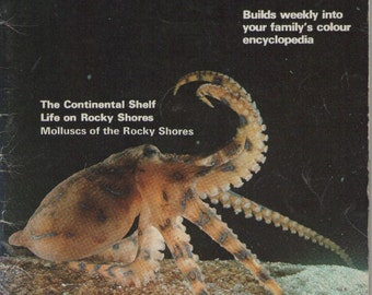On Sale - Australia's Wildlife Heritage Book  - Vintage 1970s - Vintage Children's Book
