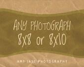 Custom Size Photograph 8x8 or 8x10