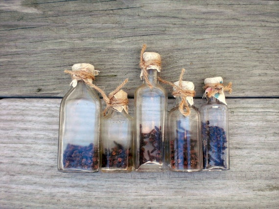 Vintage antique glass bottles / rustic home decor / clear glass / instant collection / cloves / set of five