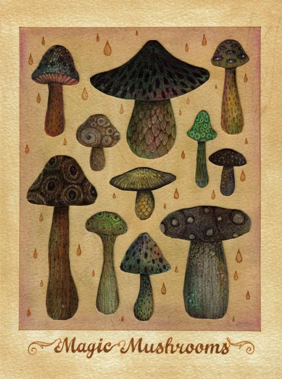 Magic Mushrooms - Original artwork