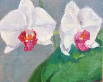 Two white and pink orchids, original oil painting