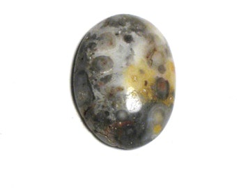 Agate Cabochon Oval Natural C2011112