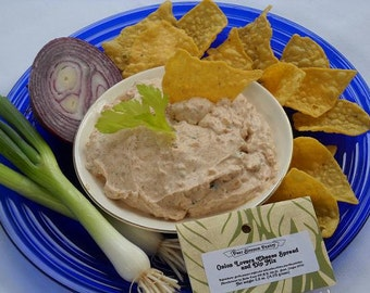 Onion Lovers Party Dip Mix