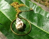 hawaiian jewelry, shell necklace, gold dipped