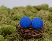 Perfect Royal Blue Stud Earrings