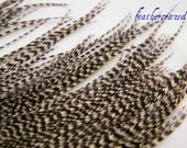 Grizzly Feathers, Earring Feathers, Black and White Feathers (16)