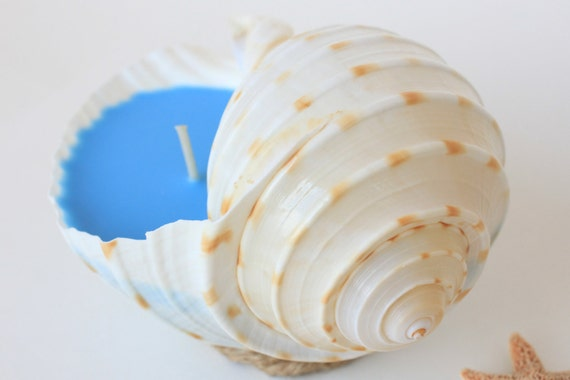 Ocean Blue Seashell Candle with scented soy wax