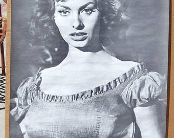 Vintage 1960s Celebrity Movie Posters B&W Sophia Loren