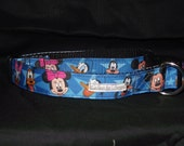 Fun for all ages adjustable collar or martingale