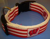 Wisconsin Dog Collar