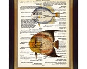 """Dictionary Page Art - Digital Sheet CP-05 - DIY - Vintage Educational Plate on Vintage Dictionary Quotations Background 8.5""""x11"""""""