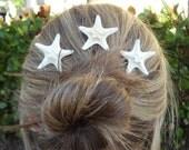 2 Small White Knob Starfish Bobby's