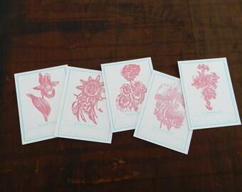 "Set of 5 letterpress flower bookplates - 3""x4"""