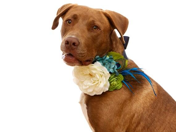 Dog Flower Collar Wedding Wedding Flower Dog Collar