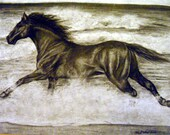 Black Horse Running on the Beach, Realistic Drawing in Charcoal and Carbon Pencil, 11x14 Inches