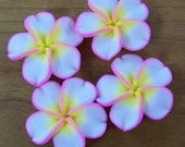 4 large polymer clay plumeria flower beads white with pink and yellow 34mm