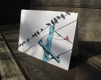 A greeting card on artist watercolor paper giclee printed w/ one of my original illustrations of birds on a wire