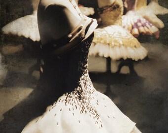 Ballet Art, Ballet Photo, Ballet Print, Paris Ballet, Dance Photo, 8x12, Ballet Dresses