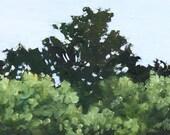 Tree Tops Original Fine Art Oil Painting Small Green Landscape on Wood panel