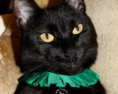St Patricks Day pet charms