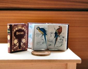 Parrots Miniature book 1:12