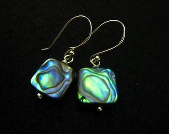 Tide of the Sea,Abalone Shell  Earrings