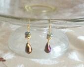 Czech crystal dangle Earrings