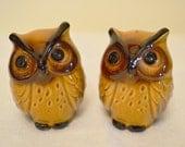 Vintage Brown Owl Salt and Pepper Shakers
