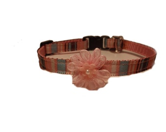 XS Great Pink and Blue Striped Collar with pretty pink flower