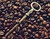 Coffee photography - Key aroma coffee beans caffeine kitchen decor chocolate brown Photography 8x12