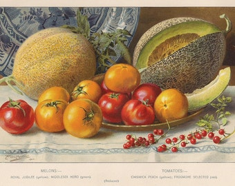 Original Victorian Chromolithograph  Tomatoes and Melons Picture print c.1900