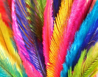 diy FEATHER HAIR EXTENSIONS 100 Count Cruelty Free Emu