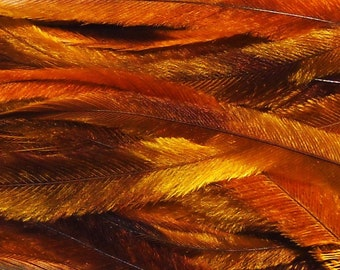 10 Tie Dye Feather Extensions CRUELTY FREE golden yellow, ochre, brown, autumn Feathers for hair FTHR06