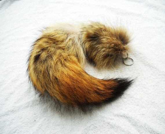 """Real Fur Coyote Tail 16""""-18"""" Totem Key chain Key Ring Furry Animal Ornament for Purse, Anime Costume, Etc"""