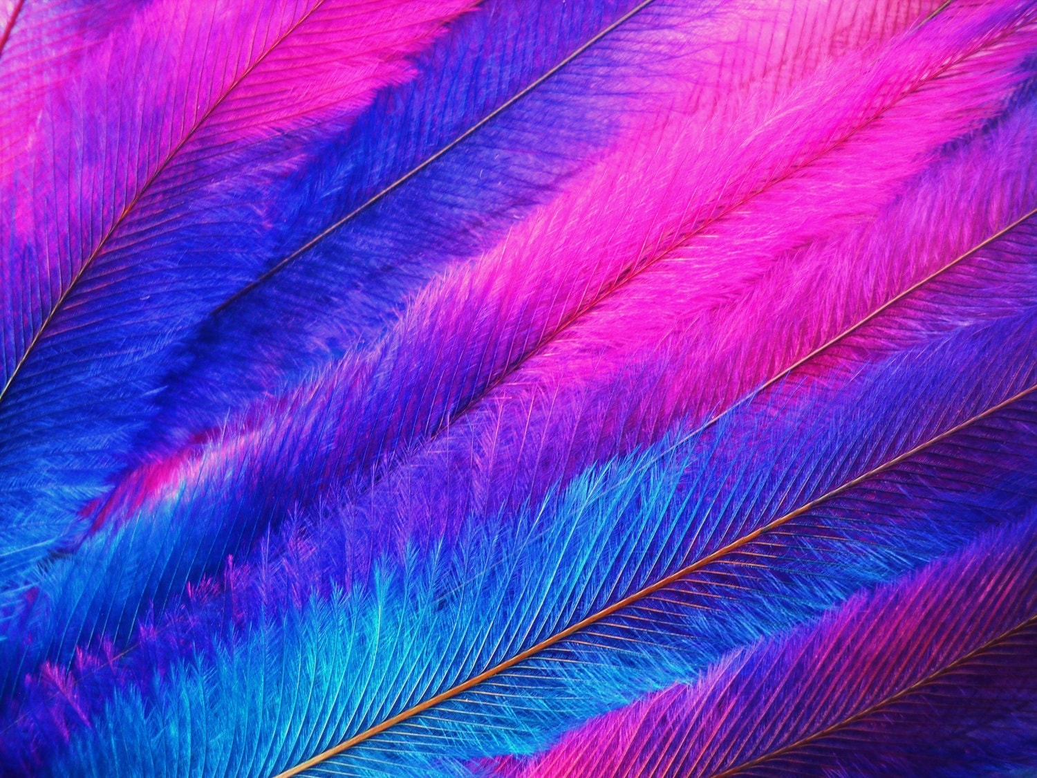 10 tie dye feather extensions cruelty free emu with free beads. Black Bedroom Furniture Sets. Home Design Ideas