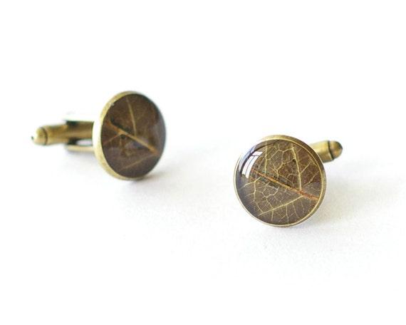 Real Leaf Cufflinks - brown unusual resin cuff links - Siberian pear