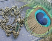 Capturing the BEAUTY in the Eye of the PEACOCK - glass capsule feather necklace