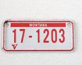 Vintage montana numbers car license plate