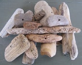 Driftwood supplies middle drilled nice and chunky