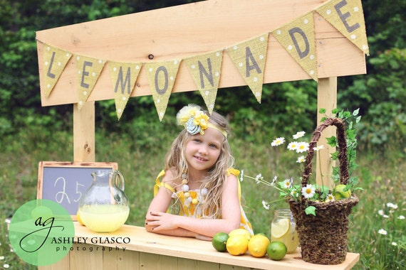 Lemonade Stand Photography Prop Banner