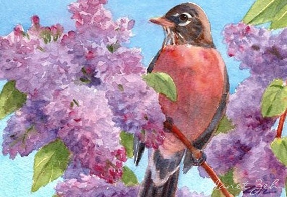 Song Birds Folded Note Cards Fine Art Boxed Set of 6 Assorted