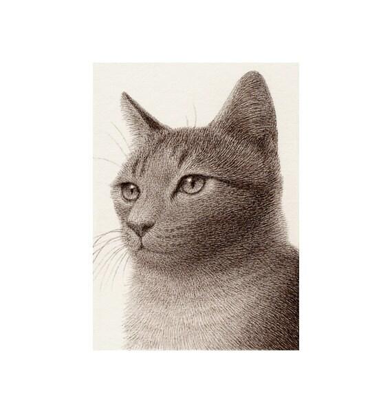 ACEO Original - Pure Pen Drawing 74 - Cat V
