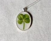 four leaf clover real pressed leaf botanical pendant. sage green 4 leaf clover set in resin get lucky luck saint patricks day