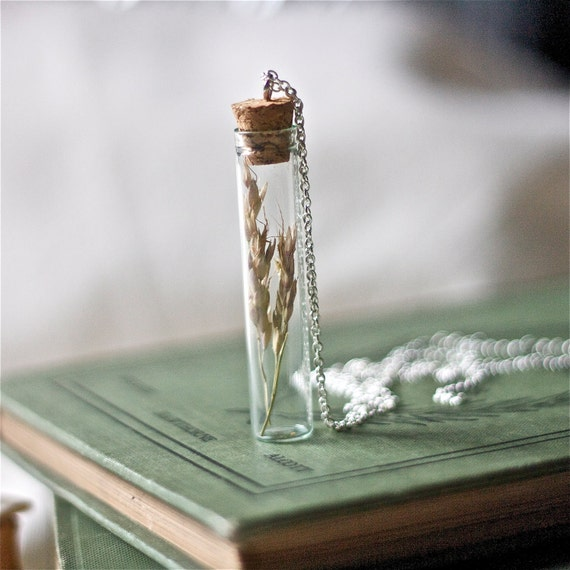 botanical vial necklace preserved specimen corked top wheat grass on an extra long 35 inch silver chain. winter garden real pressed flower