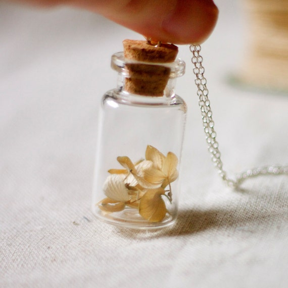 botanical vial necklace preserved specimen corked top whimsical hydrangea extra long 35 inch silver chain. winter garden real pressed flower
