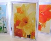 Flower garden photo note cards / Thankyou cards - you choose - set of 5