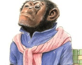 He expected to be pleasantly surprised (8x10 archival print of an indignant chimp)